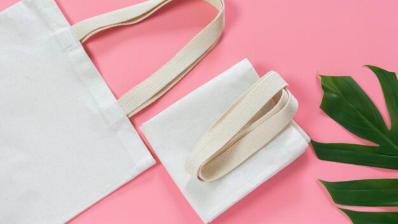งดถุงพลาสติก เลือกใช้ถุงผ้าแคนวาส 01
